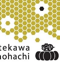 2013年度版オリジナル手ぬぐい「志のビー」